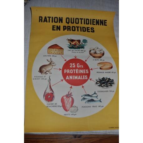 """AFFICHE PEDAGOGIQUE """"LA RATION QUOTIDIENNE EN PROTIDES"""""""
