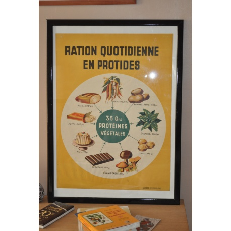 "AFFICHE PEDAGOGIQUE ""LA RATION QUOTIDIENNE EN PROTIDES"""