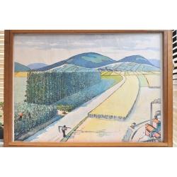 """AFFICHE SCOLAIRE """"Terrain limoneux - La plaine"""""""